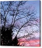 January Silhouette Canvas Print