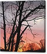 January Sunrise 3 Canvas Print
