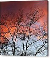 January Sunset Silhouette Canvas Print