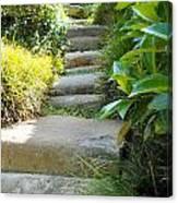 Japanese Garden Stone Steps Canvas Print