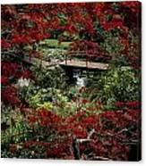 Japanese Garden, Through Acer In Canvas Print