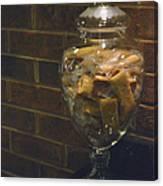Jar Of Biscotti Canvas Print