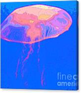 Jazzy Jelly Canvas Print