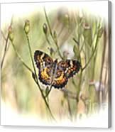 Jewel In The Marsh Canvas Print