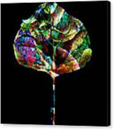 Jewel Tone Leaf Canvas Print