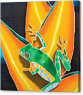 Joe's Treefrog Canvas Print