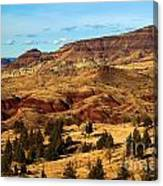 John Day Blue Basin Canvas Print