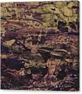 John.3 Canvas Print
