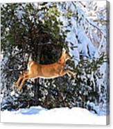 Jumper Canvas Print