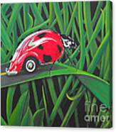 Junk In The Trunk Canvas Print