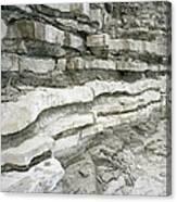 Jurassic Rock Strata Canvas Print