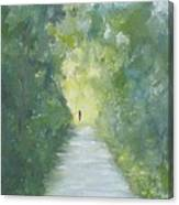 Just Another Road To Somewhere Canvas Print