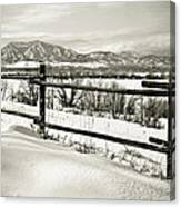 Just Beyond The Fence 2 Canvas Print