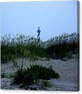 Just Beyond The Sea Oats Canvas Print
