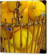 Just Lemons Canvas Print