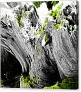 Just The Green Canvas Print