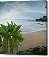 Ka Makani Olu Olu  -  Polo Beach Maui Hawaii Canvas Print