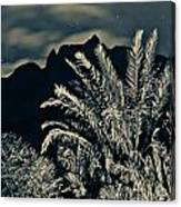 Kalalau Mountains At Night 2 Canvas Print