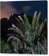 Kalalau Mountains At Night Canvas Print
