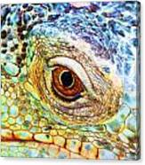 Kaleidescope Eye Canvas Print