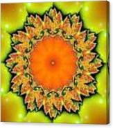 Kaleidoscope IIi Canvas Print