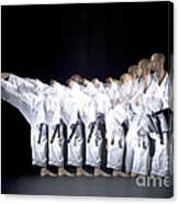 Karate Expert Canvas Print