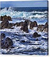 Kauai Beach 3 Canvas Print
