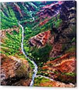 Kauai River Canyon Canvas Print