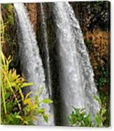 Kauai Waterfall Canvas Print