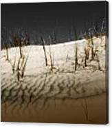 Kelso Dunes Canvas Print