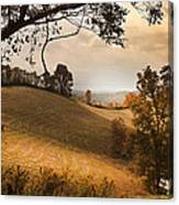 Kentucky Type Hayfields Canvas Print