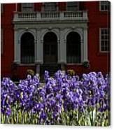 Kew Garden Irises Canvas Print