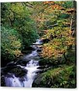 Killarney National Park, Ring Of Kerry Canvas Print