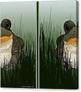 King Frog - Gently Cross Your Eyes And Focus On The Middle Image Canvas Print