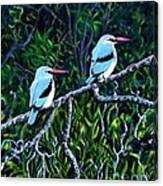 Woodland Kingfisher Canvas Print
