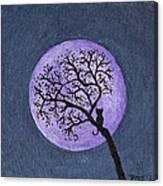 Kittyboy Moon Canvas Print