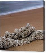 Knots On The Sand Canvas Print