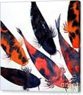 Koi Pond Canvas Print