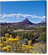 Kolob Terrace Afternoon Canvas Print