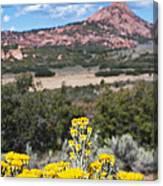 Kolob Terrace Red Buttes Canvas Print