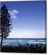 Kualoa Ranch 6 Canvas Print