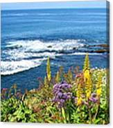 La Jolla Coast Canvas Print