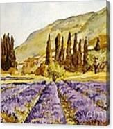 La Provence Canvas Print
