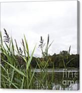 Lac Des Castors Canvas Print