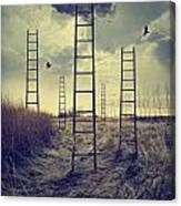 Ladders Reaching To The Sky In A Autumn Field Canvas Print