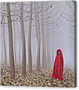 Lady In Red - 7 Canvas Print
