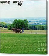 Lady Plowing In Field Canvas Print