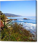 Laguna Beach California Coastline Canvas Print