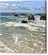 Laguna Beach Coast Canvas Print