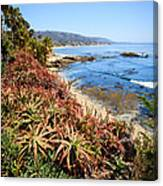 Laguna Beach Coastline Photo Canvas Print